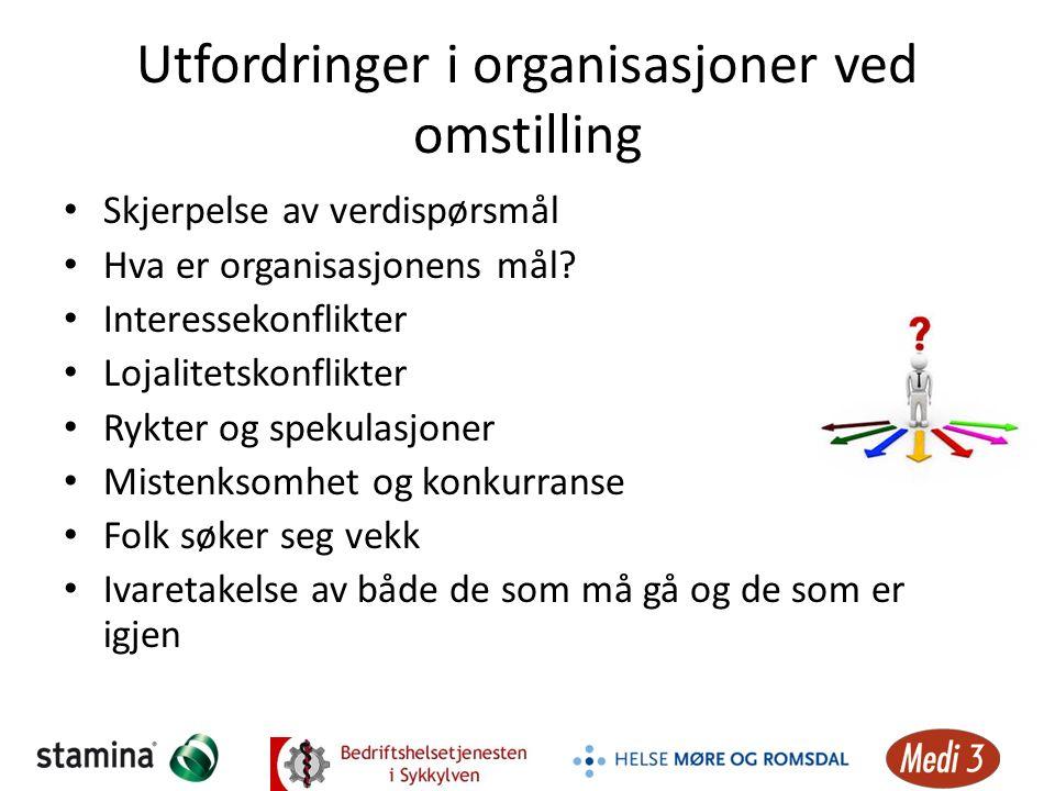 Utfordringer i organisasjoner ved omstilling Skjerpelse av verdispørsmål Hva er organisasjonens mål? Interessekonflikter Lojalitetskonflikter Rykter o