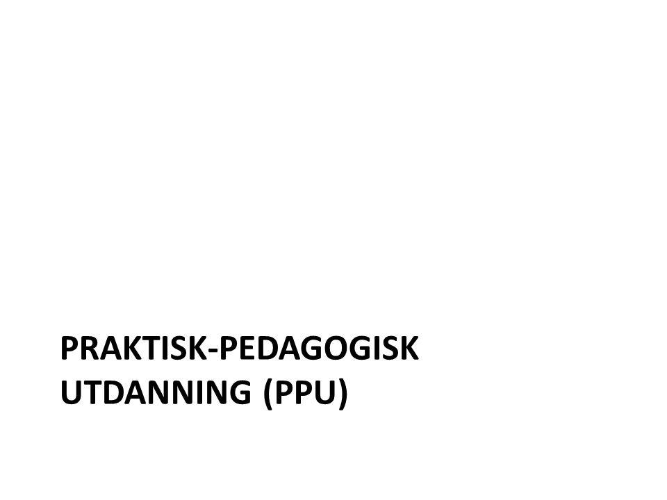 Skolen trenger… Lærere med ulik erfarings- og interesseprofil Lærere på 1.-7./5.-10./8.-13.