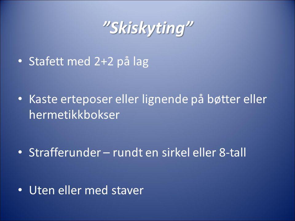 Skiskyting Stafett med 2+2 på lag Kaste erteposer eller lignende på bøtter eller hermetikkbokser Strafferunder – rundt en sirkel eller 8-tall Uten eller med staver
