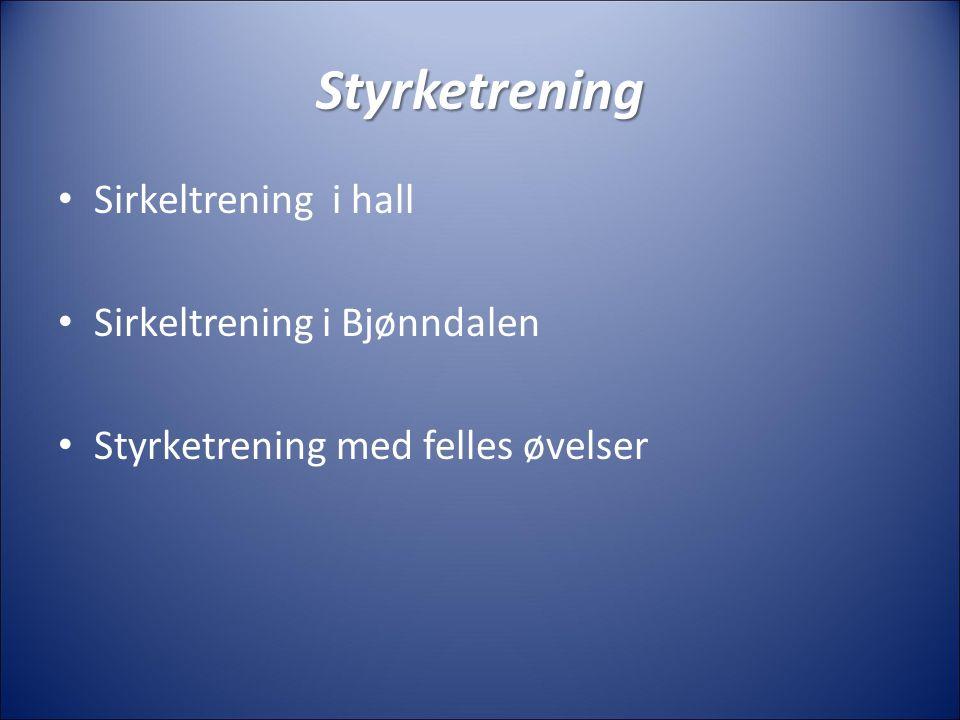 Styrketrening Sirkeltrening i hall Sirkeltrening i Bjønndalen Styrketrening med felles øvelser