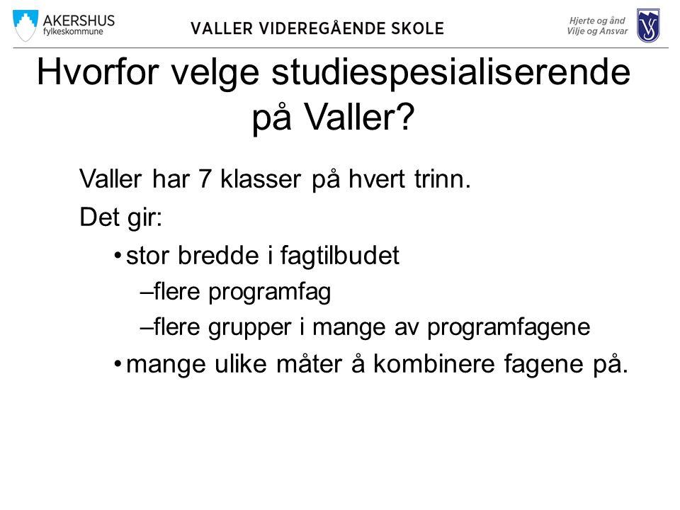 Hvorfor velge studiespesialiserende på Valler.Valler har 7 klasser på hvert trinn.