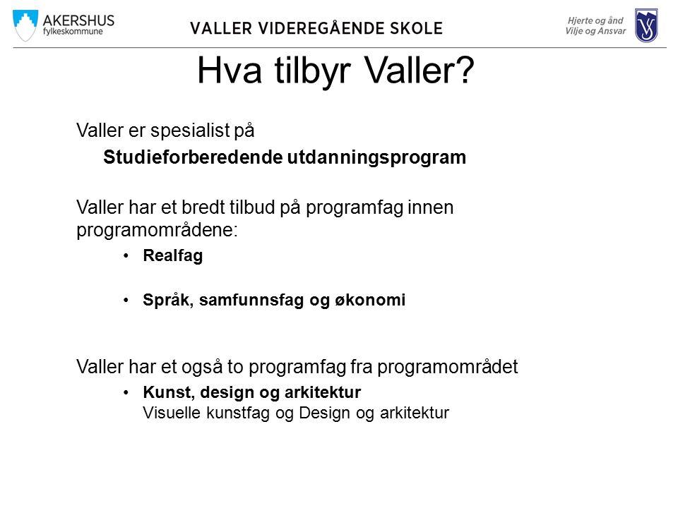 Hva tilbyr Valler.