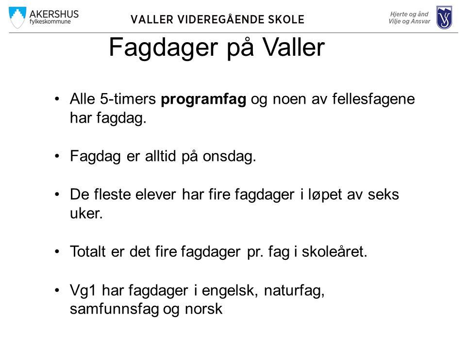 Fagdager på Valler Alle 5-timers programfag og noen av fellesfagene har fagdag.