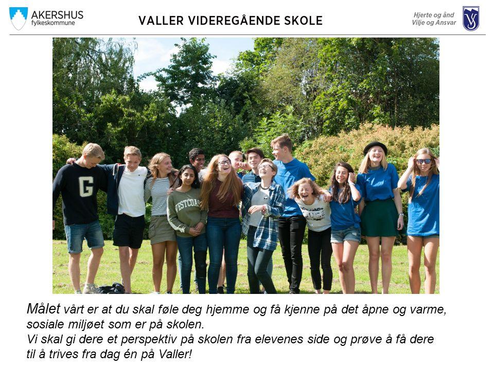 Fellesfag i fremmedspråk Alle elever i de studieforberedende løp, må ha et fremmedspråk (engelsk er ikke et fremmedspråk) Valler har i år undervisning i –Fransk nivå II –Spansk nivå II –Tysk nivå II –Tysk nivå I Noen elever velger å dokumentere sin kompetanse i andre fremmedspråk – morsmål – som privatist.