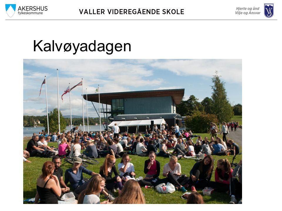 Kalvøya 2015