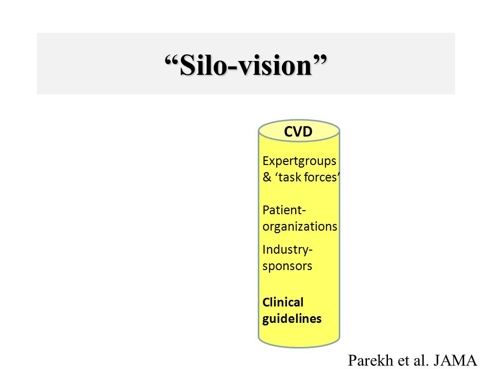 Silo-vision CVD Expertgroups & 'task forces' Patient- organizations Industry- sponsors Clinical guidelines Parekh et al.
