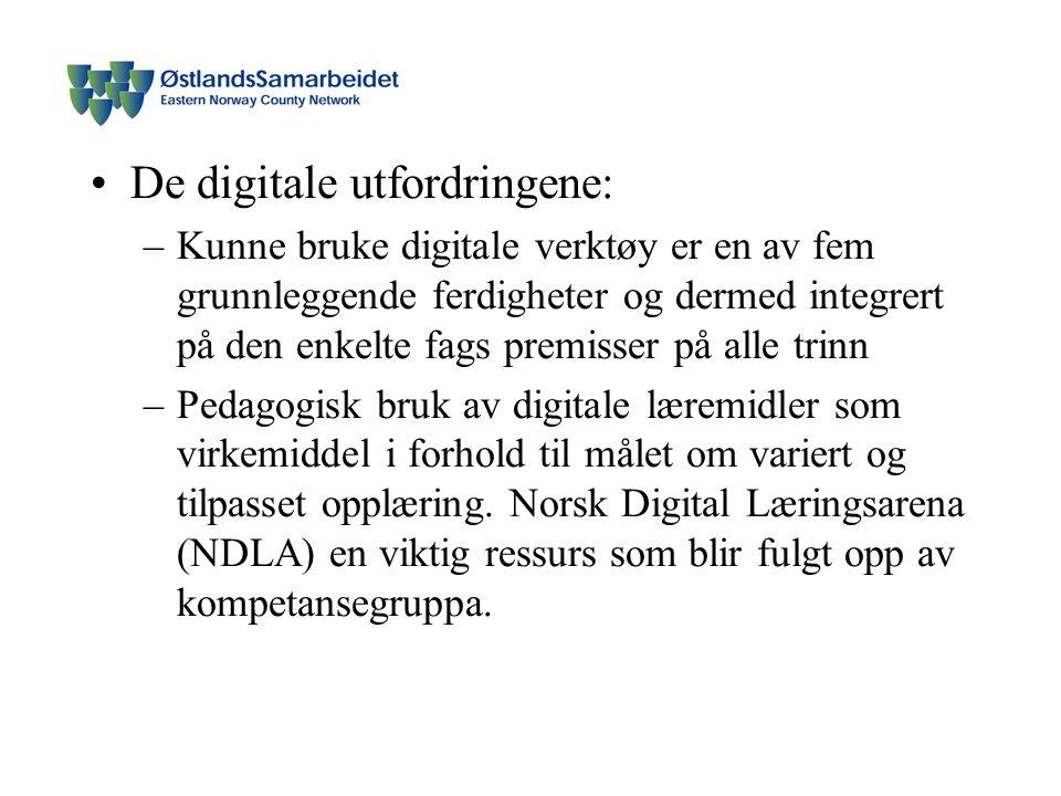 De digitale utfordringene: –Kunne bruke digitale verktøy er en av fem grunnleggende ferdigheter og dermed integrert på den enkelte fags premisser på alle trinn –Pedagogisk bruk av digitale læremidler som virkemiddel i forhold til målet om variert og tilpasset opplæring.