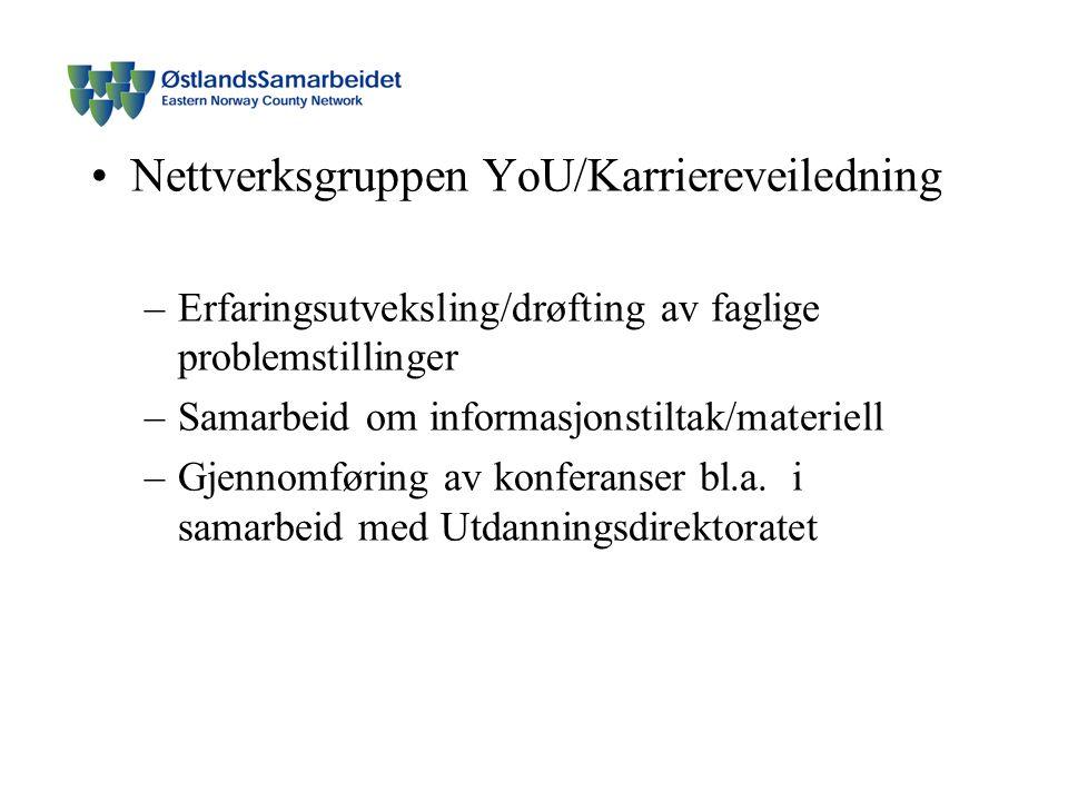 Nettverksgruppen YoU/Karriereveiledning –Erfaringsutveksling/drøfting av faglige problemstillinger –Samarbeid om informasjonstiltak/materiell –Gjennomføring av konferanser bl.a.