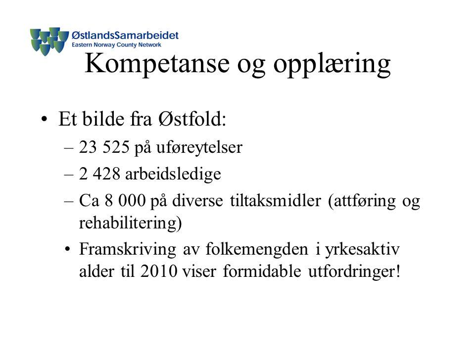 Kompetanse og opplæring Et bilde fra Østfold: –23 525 på uføreytelser –2 428 arbeidsledige –Ca 8 000 på diverse tiltaksmidler (attføring og rehabilitering) Framskriving av folkemengden i yrkesaktiv alder til 2010 viser formidable utfordringer!