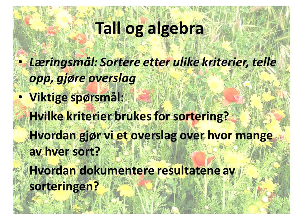 Tall og algebra Læringsmål: Sortere etter ulike kriterier, telle opp, gjøre overslag Viktige spørsmål: Hvilke kriterier brukes for sortering? Hvordan