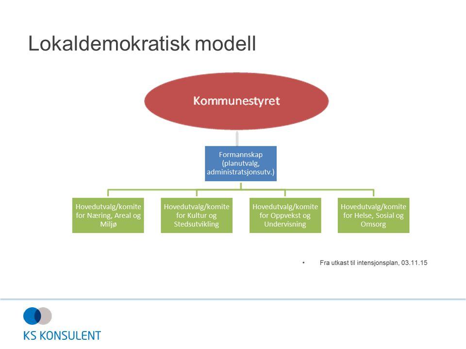 Lokaldemokratisk modell