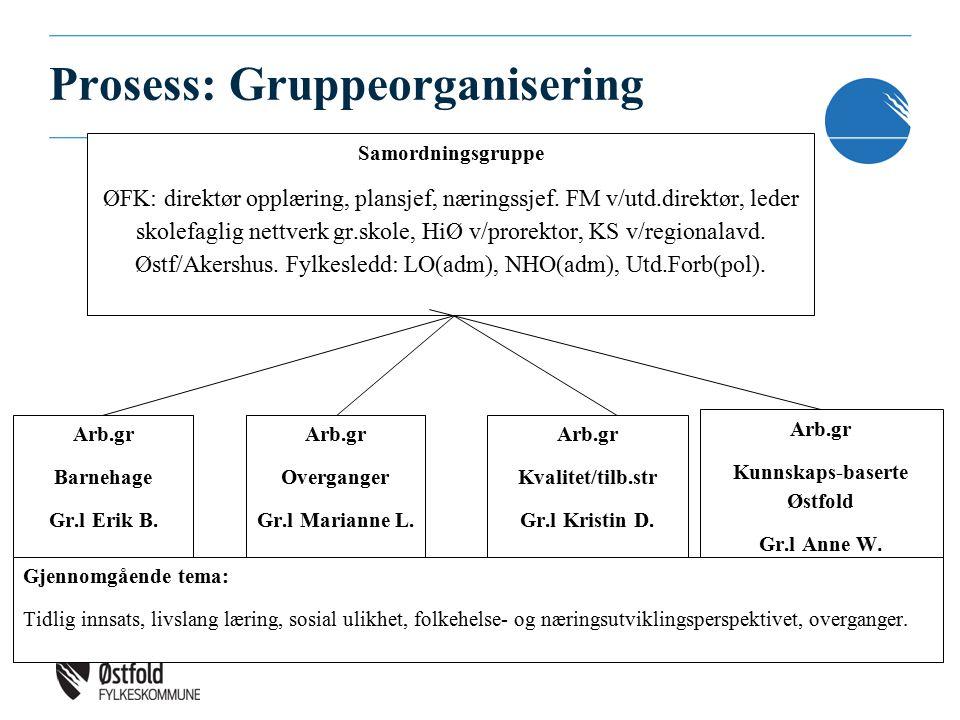 Prosess: Gruppeorganisering Samordningsgruppe ØFK: direktør opplæring, plansjef, næringssjef.