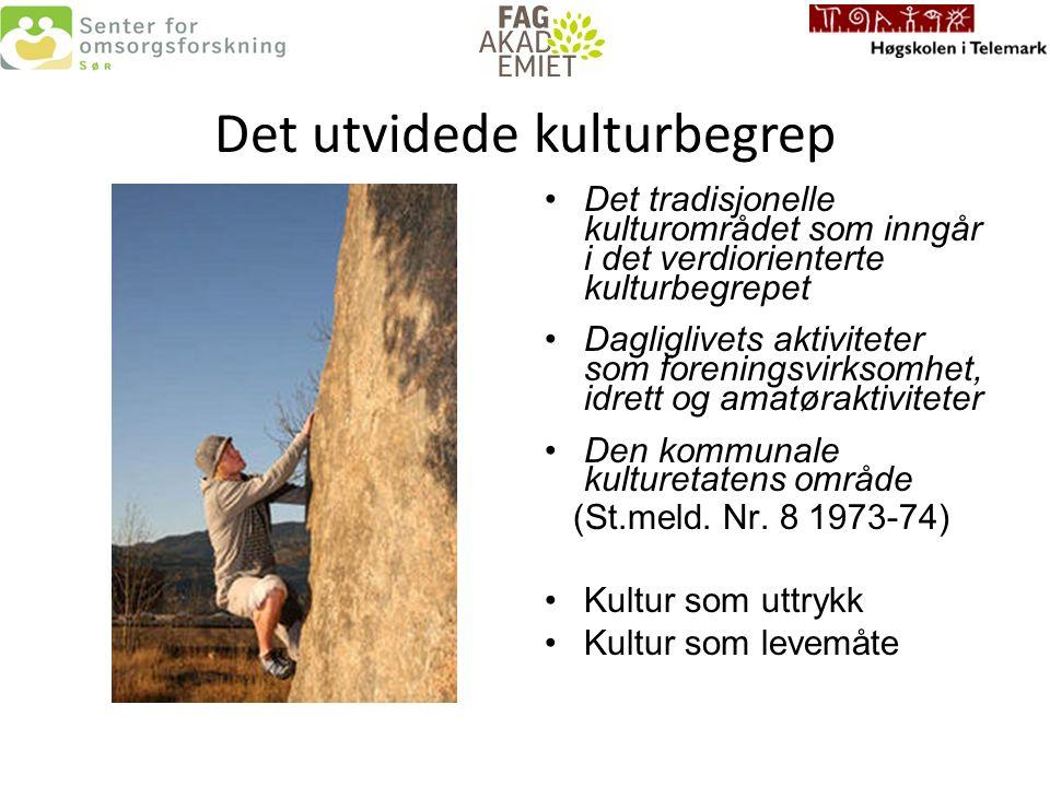 Det flerkulturelle perspektivet Ansatte i det offentlige Brukere/pasienter Hva er likt –hva er forskjellige