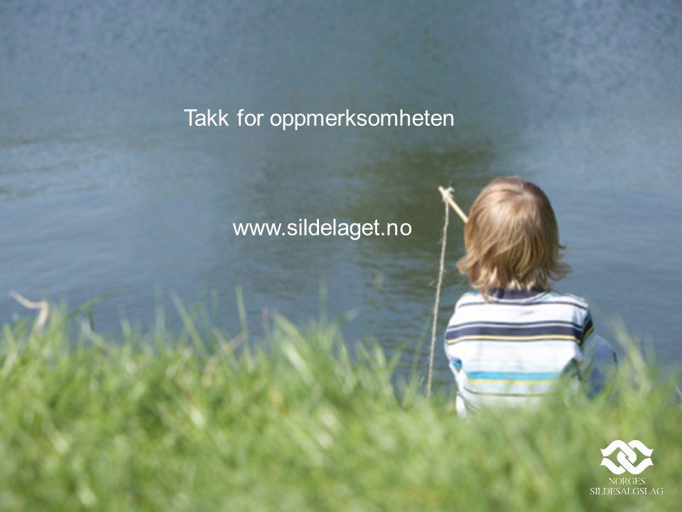 Takk for oppmerksomheten www.sildelaget.no