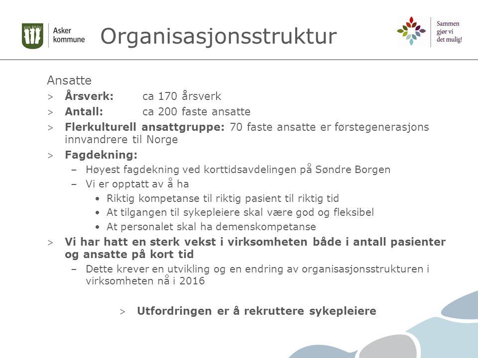 Organisasjonsstruktur Ansatte > Årsverk:ca 170 årsverk > Antall:ca 200 faste ansatte > Flerkulturell ansattgruppe: 70 faste ansatte er førstegenerasjo