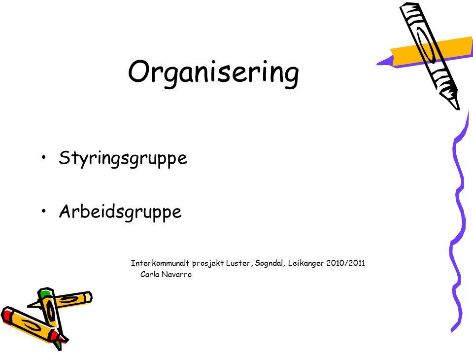 Organisering Styringsgruppe Arbeidsgruppe Interkommunalt prosjekt Luster, Sogndal, Leikanger 2010/2011 Carla Navarro