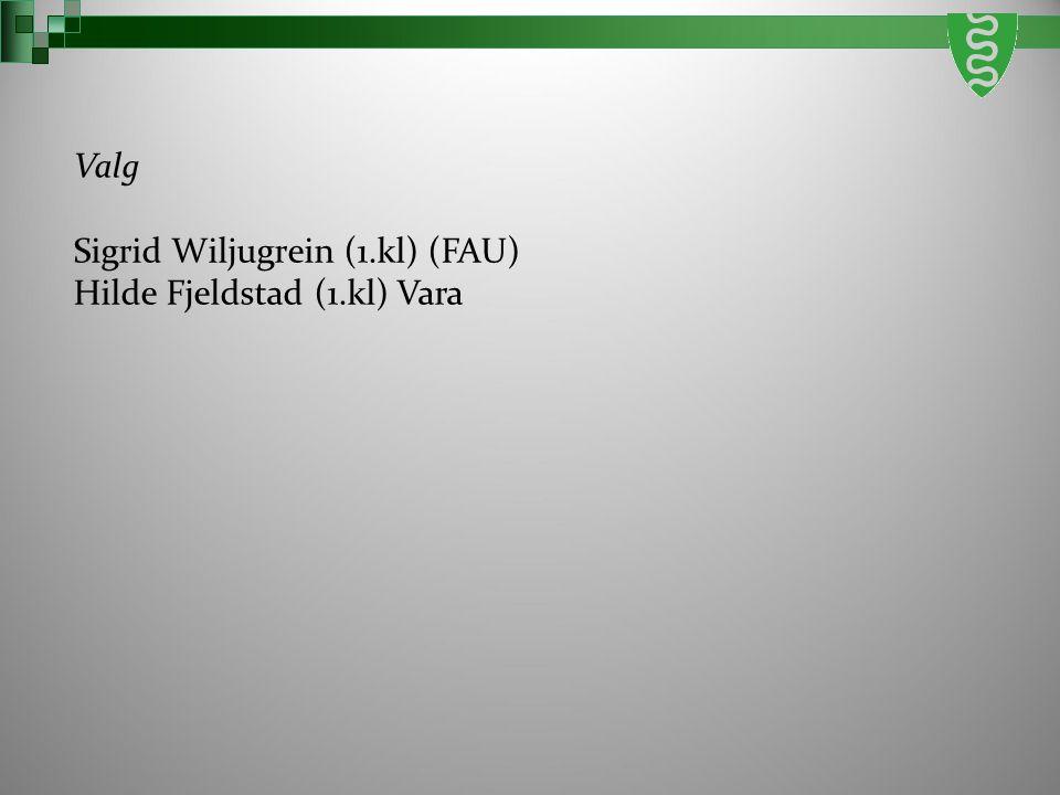 Valg Sigrid Wiljugrein (1.kl) (FAU) Hilde Fjeldstad (1.kl) Vara