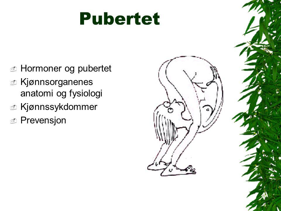 Pubertet  Hormoner og pubertet  Kjønnsorganenes anatomi og fysiologi  Kjønnssykdommer  Prevensjon
