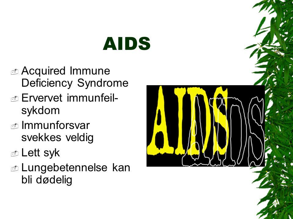 AIDS  Acquired Immune Deficiency Syndrome  Ervervet immunfeil- sykdom  Immunforsvar svekkes veldig  Lett syk  Lungebetennelse kan bli dødelig