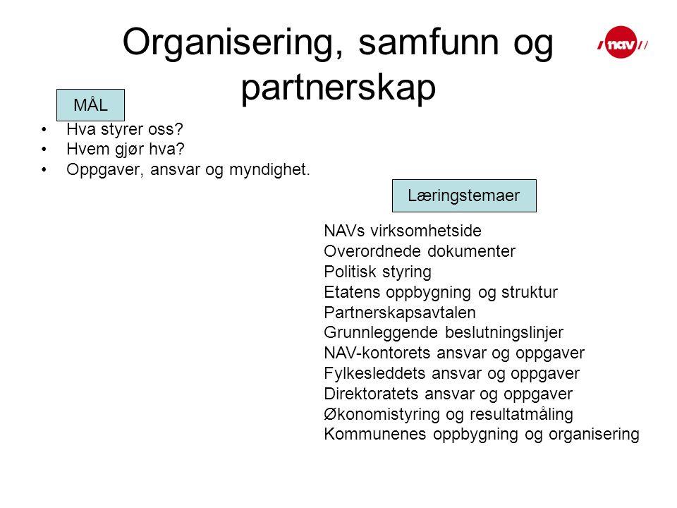 Organisering, samfunn og partnerskap Hva styrer oss.