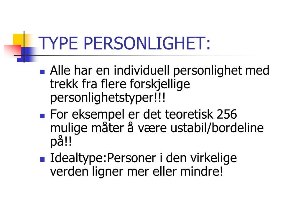 TYPE PERSONLIGHET: Alle har en individuell personlighet med trekk fra flere forskjellige personlighetstyper!!.