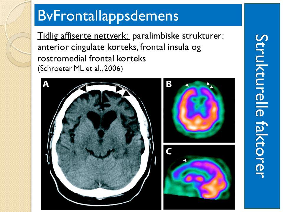 Strukturelle faktorer BvFrontallappsdemens Tidlig affiserte nettverk: paralimbiske strukturer: anterior cingulate korteks, frontal insula og rostromedial frontal korteks (Schroeter ML et al., 2006)