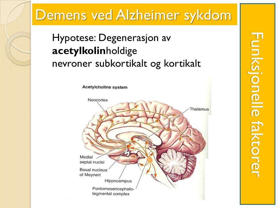 Funksjonelle faktorer Hypotese: Degenerasjon av acetylkolinholdige nevroner subkortikalt og kortikalt Demens ved Alzheimer sykdom Dd D DDDDDDDDddDDDDDDDDdd DDdDDd