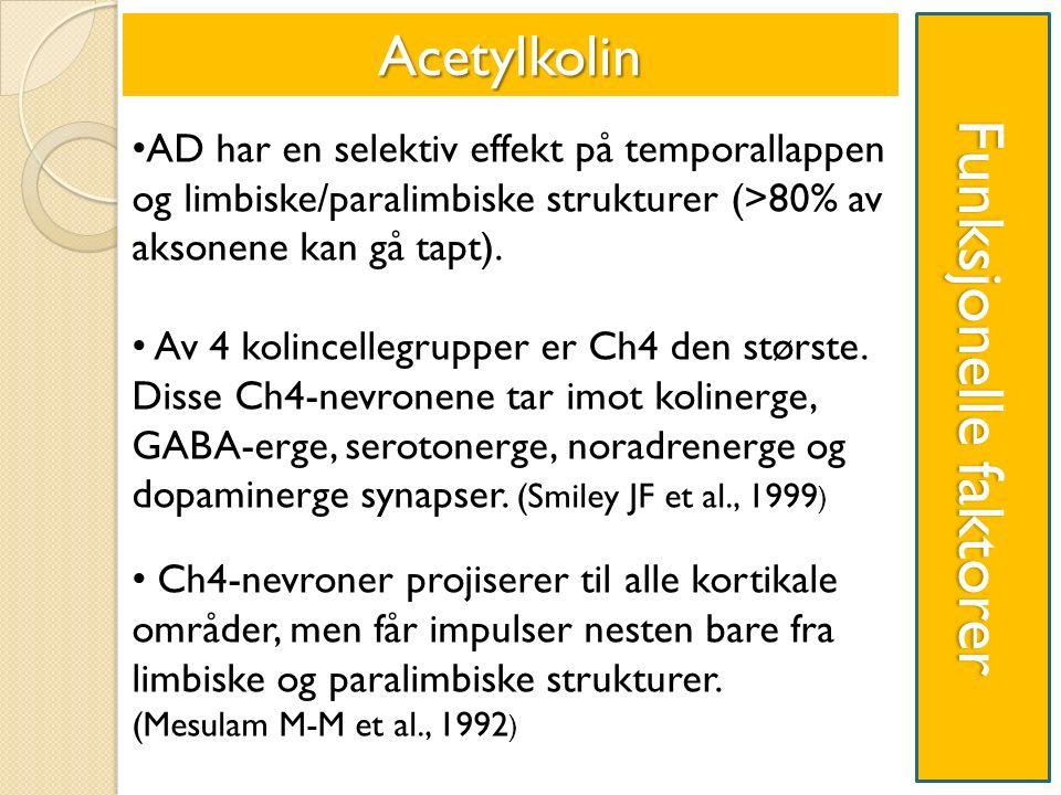 Funksjonelle faktorer AD har en selektiv effekt på temporallappen og limbiske/paralimbiske strukturer (>80% av aksonene kan gå tapt).