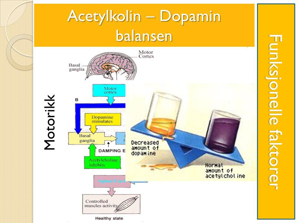 Funksjonelle faktorer Acetylkolin – Dopamin balansen Motorikk