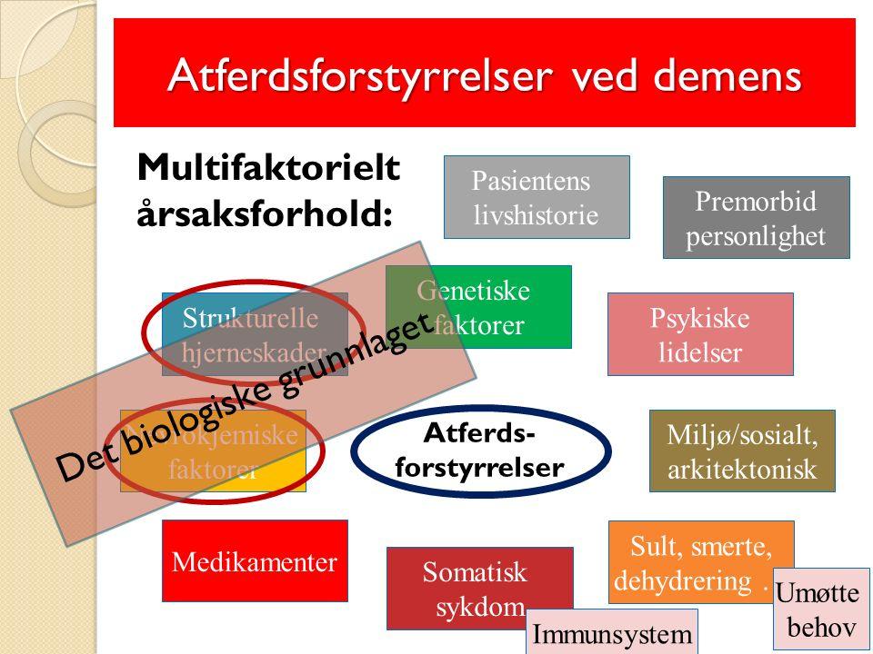 Atferdsforstyrrelser ved demens Multifaktorielt årsaksforhold: Atferds- forstyrrelser Strukturelle hjerneskader Genetiske faktorer Medikamenter Somatisk sykdom Psykiske lidelser Nevrokjemiske faktorer Miljø/sosialt, arkitektonisk Sult, smerte, dehydrering … Umøtte behov Premorbid personlighet Pasientens livshistorie Det biologiske grunnlaget Immunsystem