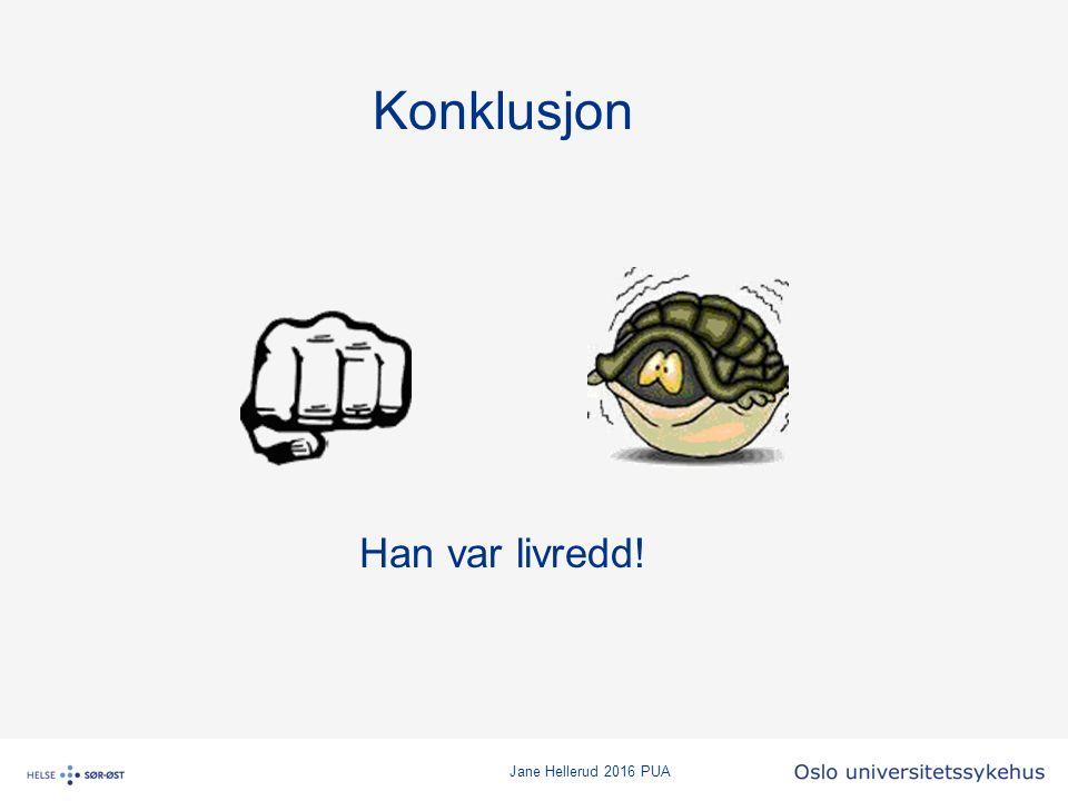 Jane Hellerud 2016 PUA Konklusjon Han var livredd!