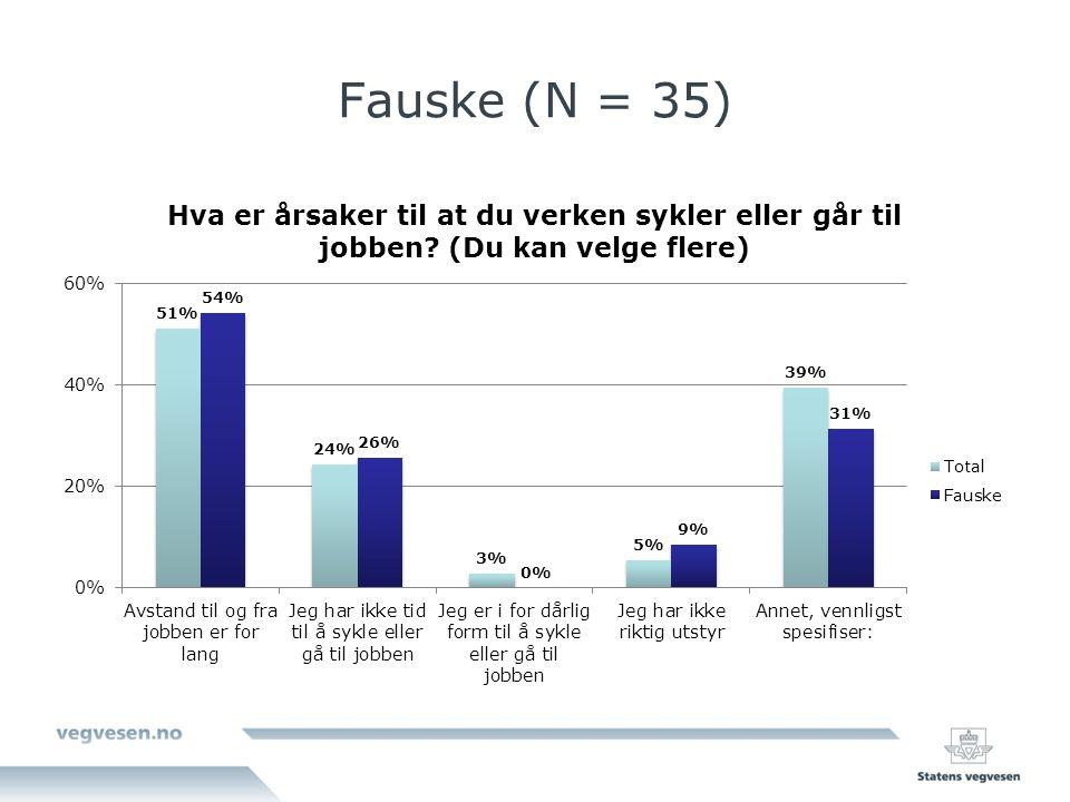 Fauske (N = 35)