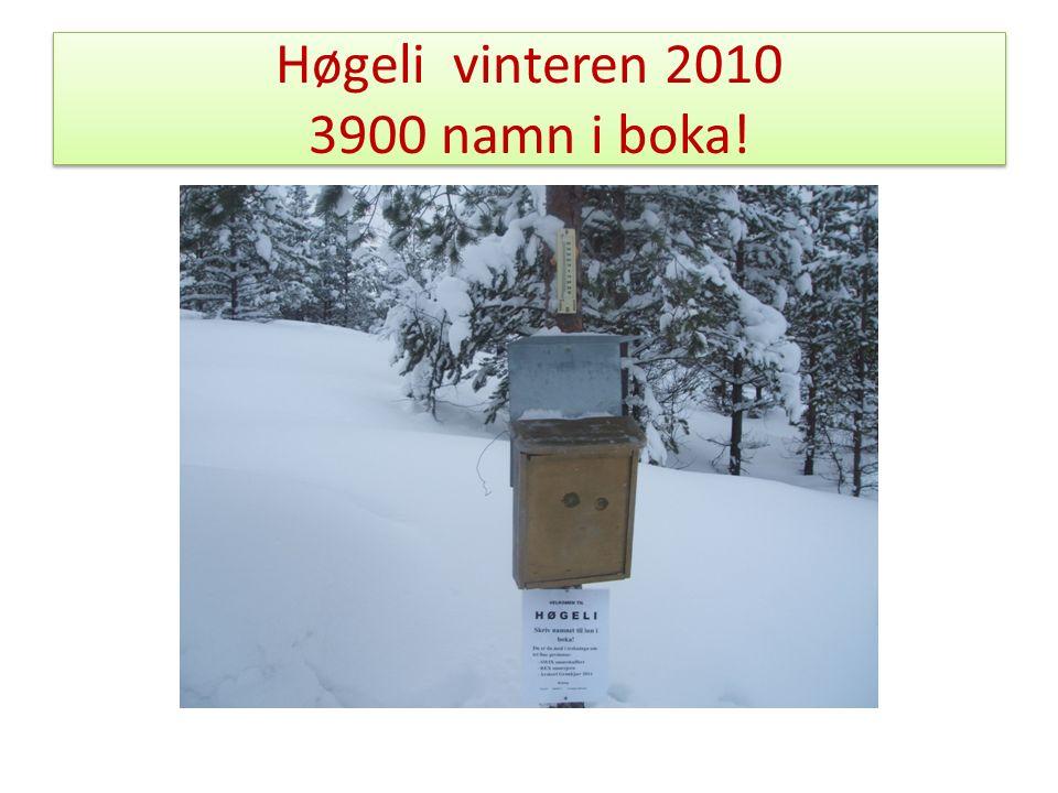 Høgeli vinteren 2010 3900 namn i boka!