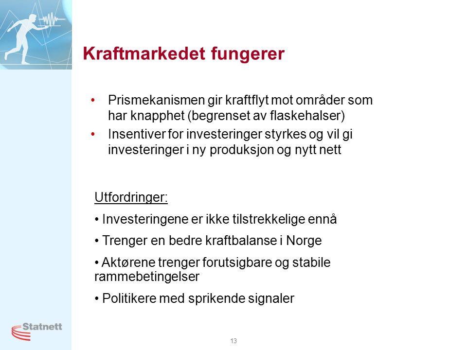 13 Kraftmarkedet fungerer Prismekanismen gir kraftflyt mot områder som har knapphet (begrenset av flaskehalser) Insentiver for investeringer styrkes og vil gi investeringer i ny produksjon og nytt nett Utfordringer: Investeringene er ikke tilstrekkelige ennå Trenger en bedre kraftbalanse i Norge Aktørene trenger forutsigbare og stabile rammebetingelser Politikere med sprikende signaler
