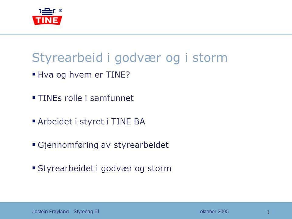 2 Jostein Frøyland Styredag BIoktober 2005 Årsmøte TINE BA Konsernstyre Styre i meieri- selskapene Råd Eierorganisasjonen i TINE ca 280 produsentlag Regionmøter