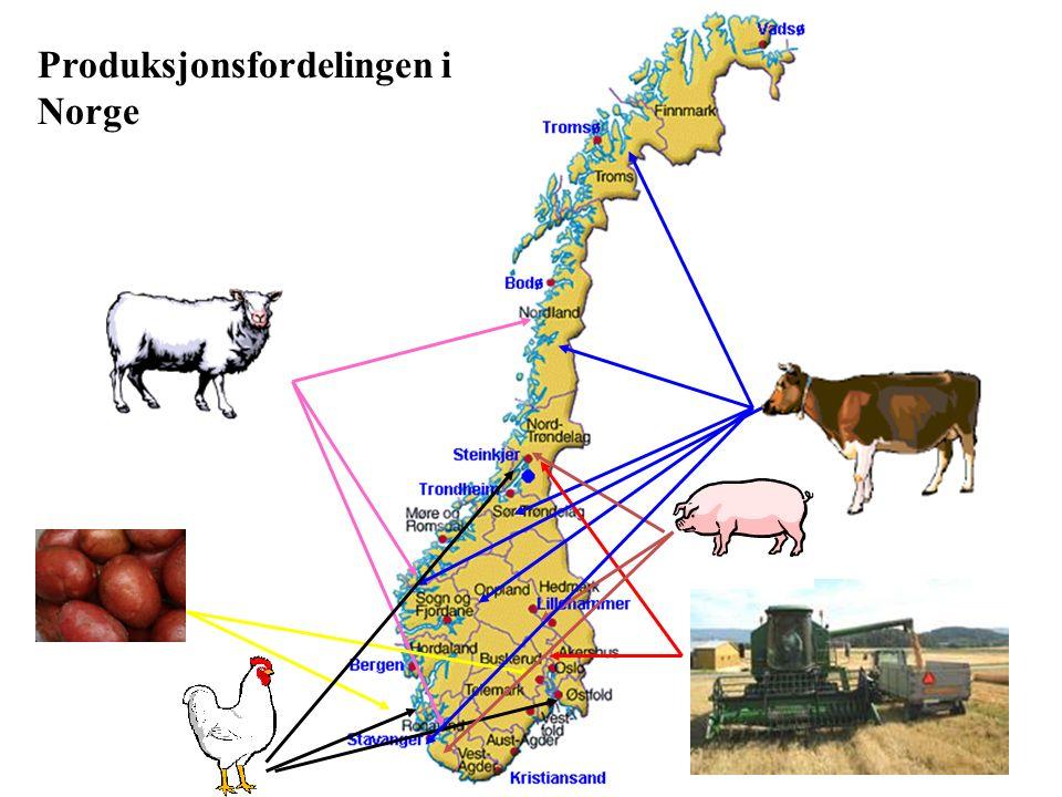 Produksjonsfordelingen i Norge