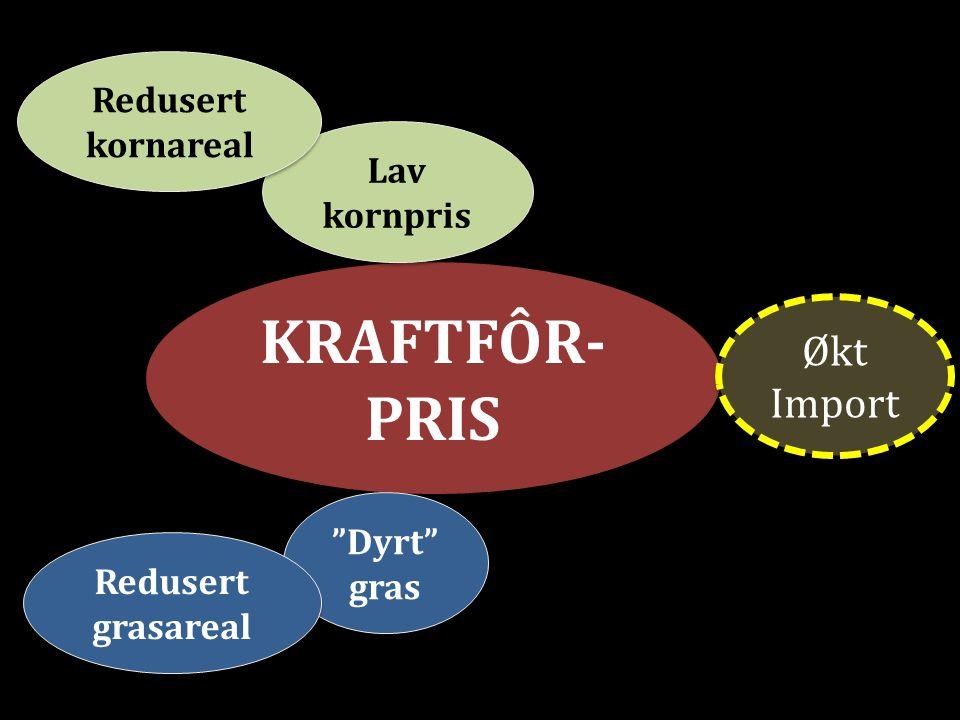 KRAFTFÔR- PRIS Lav kornpris Redusert kornareal Dyrt gras Redusert grasareal Økt Import
