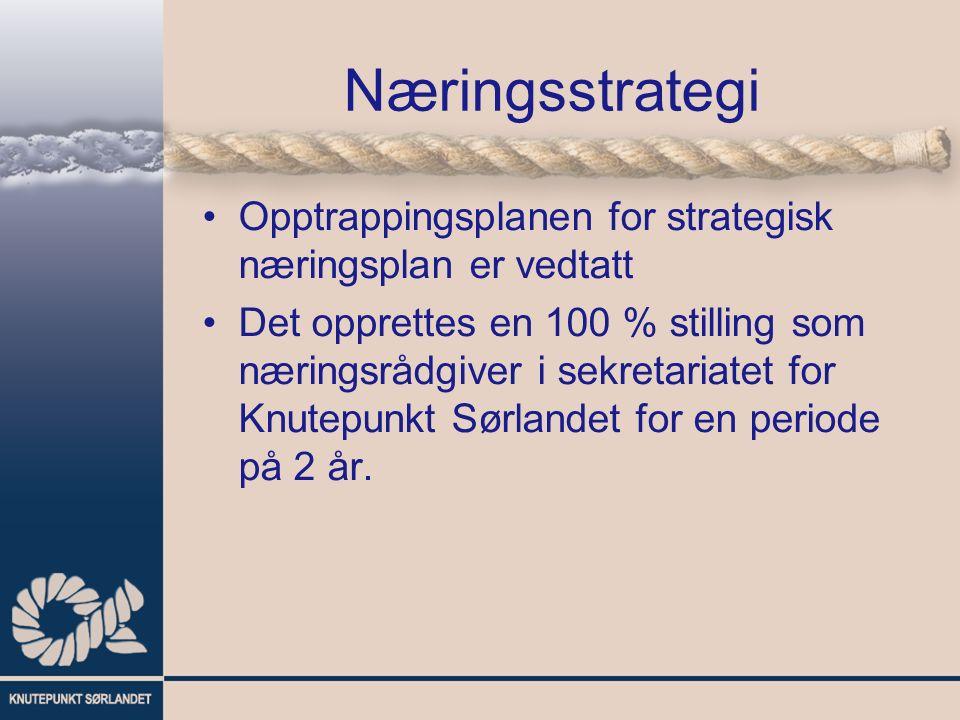 Næringsstrategi Opptrappingsplanen for strategisk næringsplan er vedtatt Det opprettes en 100 % stilling som næringsrådgiver i sekretariatet for Knutepunkt Sørlandet for en periode på 2 år.