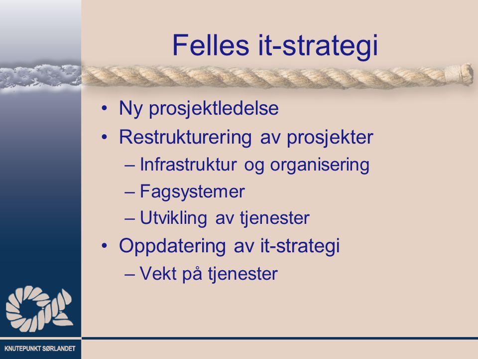 Felles it-strategi Ny prosjektledelse Restrukturering av prosjekter –Infrastruktur og organisering –Fagsystemer –Utvikling av tjenester Oppdatering av it-strategi –Vekt på tjenester