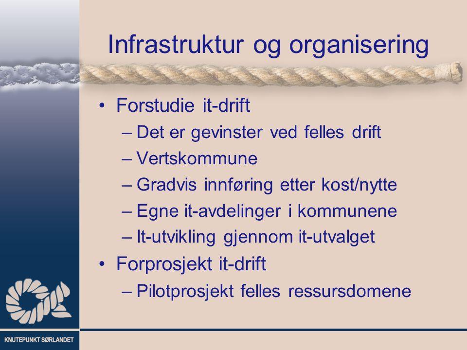 Infrastruktur og organisering Forstudie it-drift –Det er gevinster ved felles drift –Vertskommune –Gradvis innføring etter kost/nytte –Egne it-avdelin