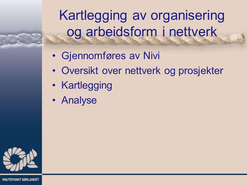 Kartlegging av organisering og arbeidsform i nettverk Gjennomføres av Nivi Oversikt over nettverk og prosjekter Kartlegging Analyse
