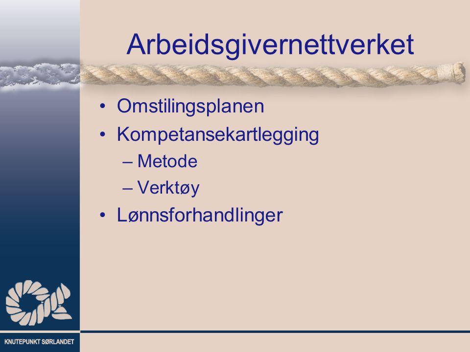 Arbeidsgivernettverket Omstilingsplanen Kompetansekartlegging –Metode –Verktøy Lønnsforhandlinger
