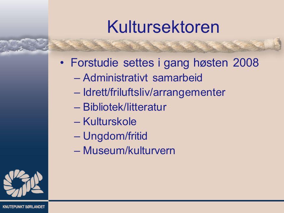 Kultursektoren Forstudie settes i gang høsten 2008 –Administrativt samarbeid –Idrett/friluftsliv/arrangementer –Bibliotek/litteratur –Kulturskole –Ungdom/fritid –Museum/kulturvern