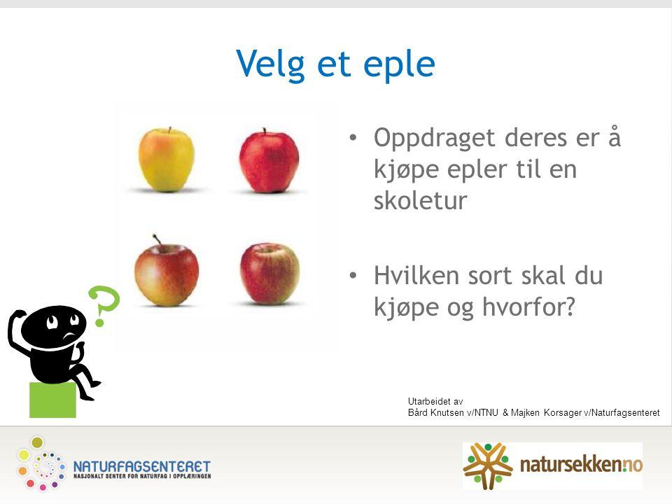 Velg et eple Oppdraget deres er å kjøpe epler til en skoletur Hvilken sort skal du kjøpe og hvorfor.