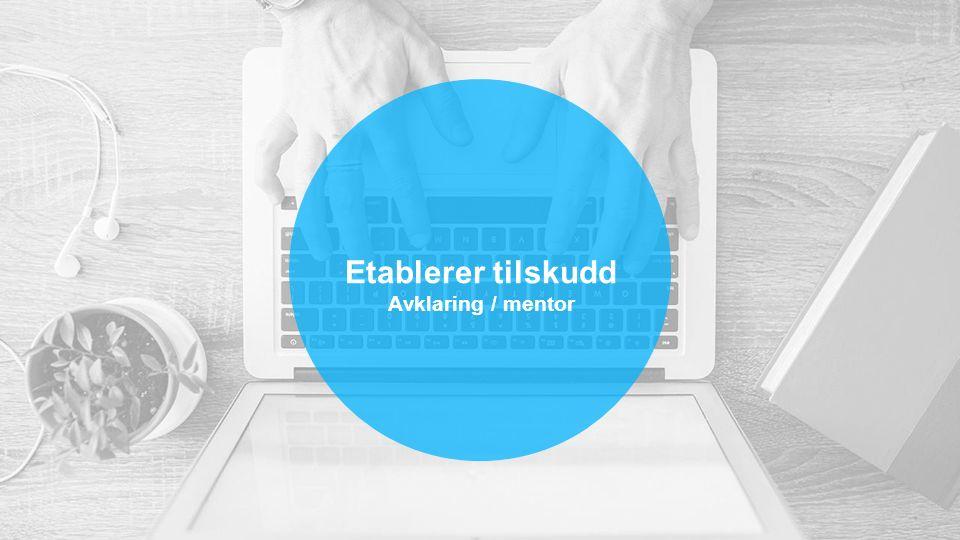Etablerer tilskudd Avklaring / mentor