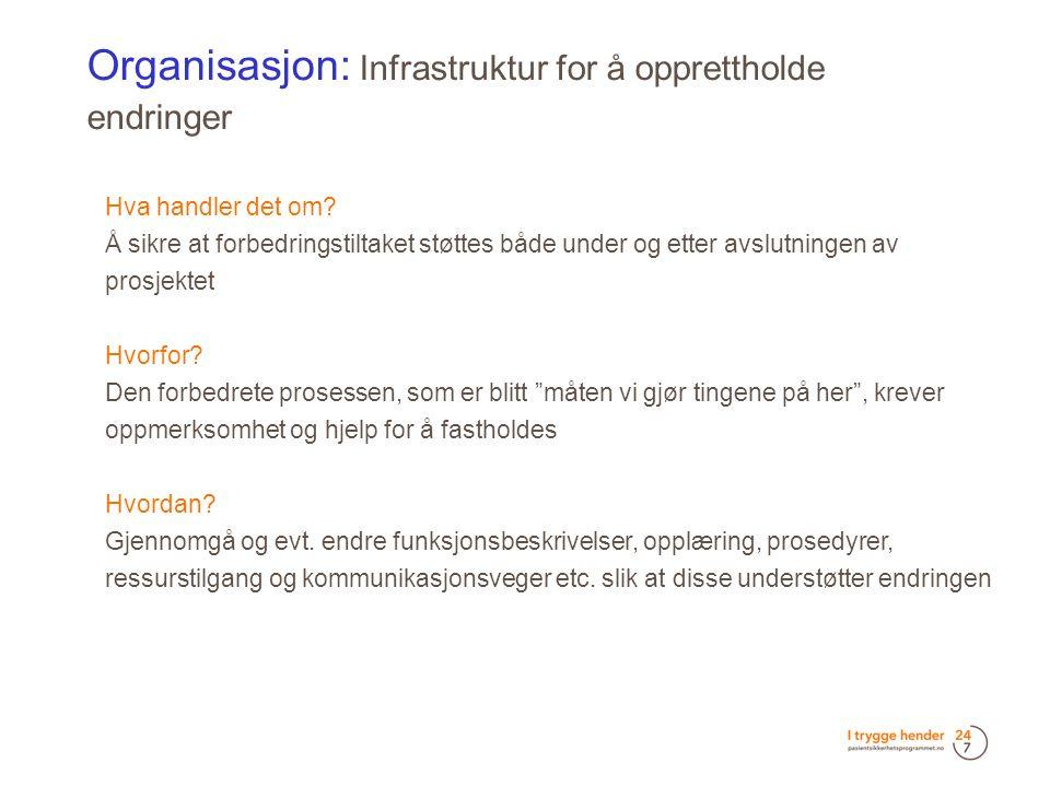 Organisasjon: Infrastruktur for å opprettholde endringer  Hva handler det om.