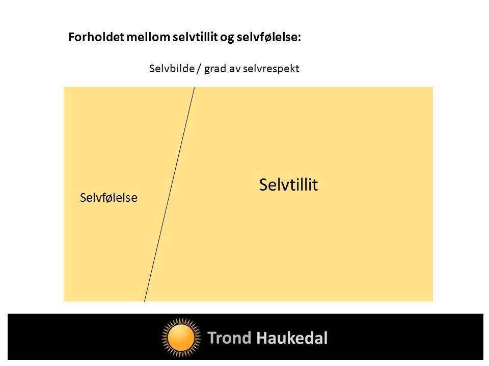 Forholdet mellom selvtillit og selvfølelse: Selvbilde / grad av selvrespekt Selvfølelse Selvtillit