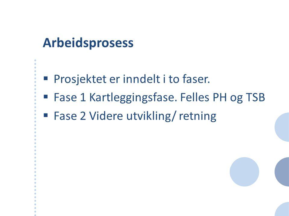 Arbeidsprosess  Prosjektet er inndelt i to faser.  Fase 1 Kartleggingsfase. Felles PH og TSB  Fase 2 Videre utvikling/ retning