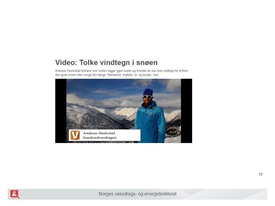 Norges vassdrags- og energidirektorat 17