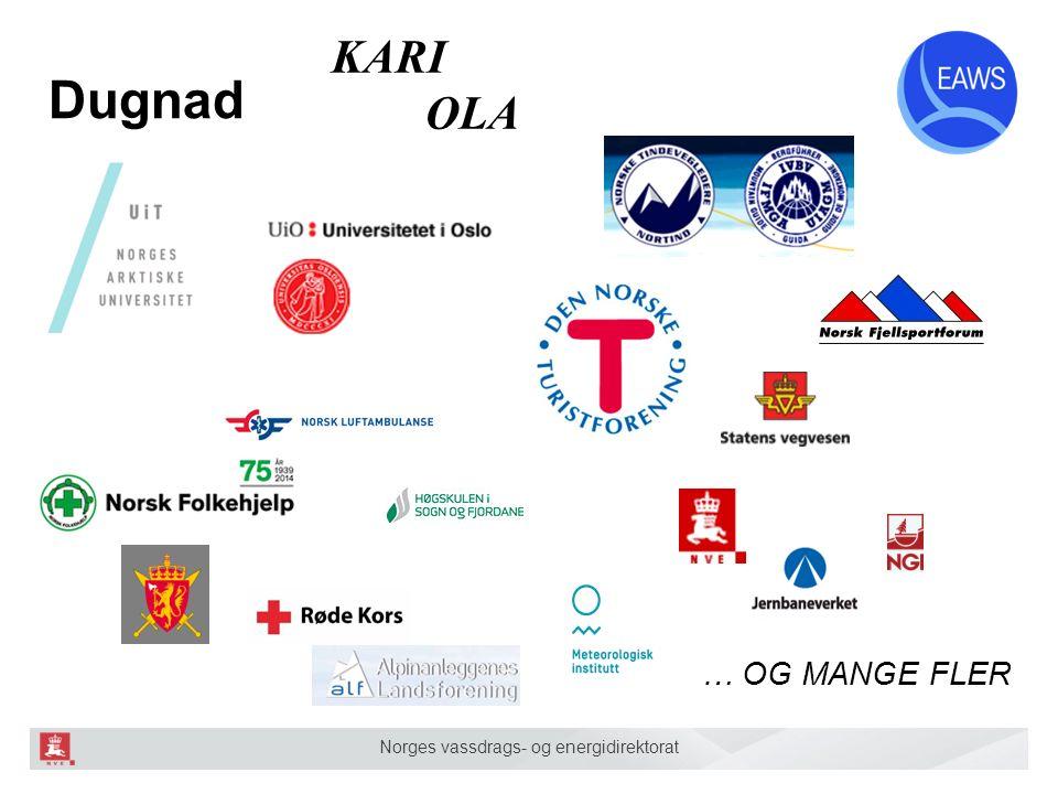 Norges vassdrags- og energidirektorat Dugnad KARI OLA … OG MANGE FLER